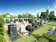 広々とした人気の芝生墓所